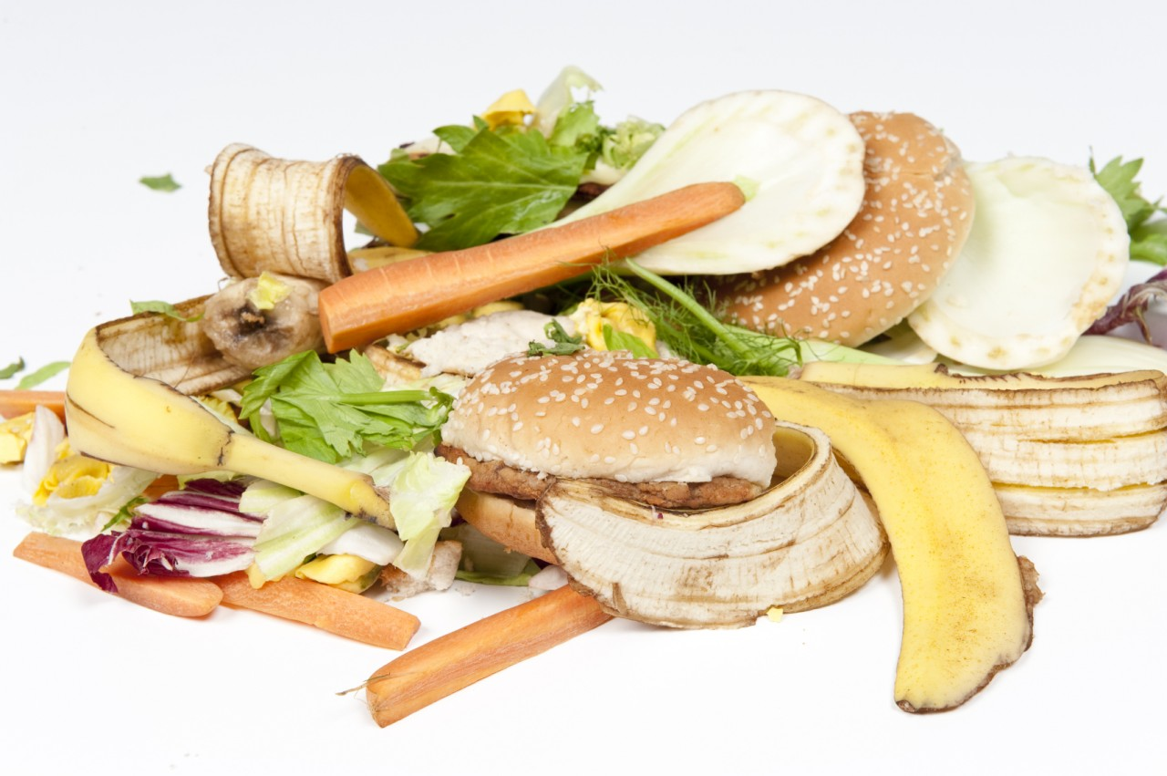 Vast amounts of food waste generated daily