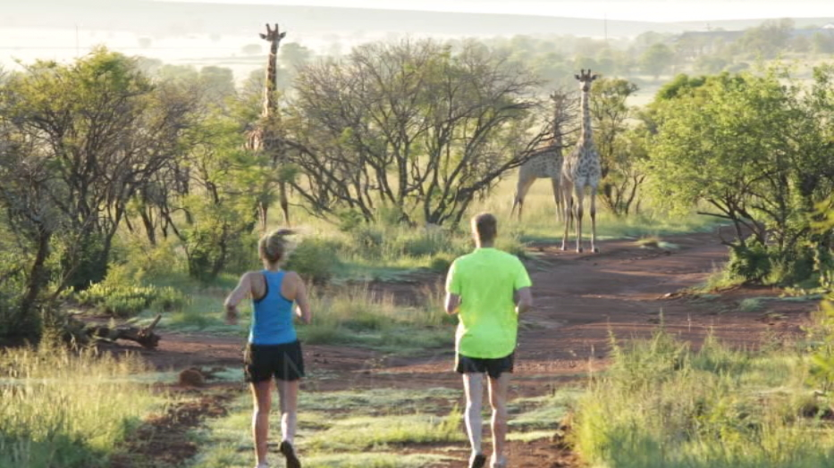 An early morning run on Lekwena Wildlife Estate