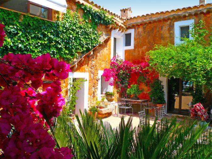 House surrounded by plants and flowers (Santa Maria)