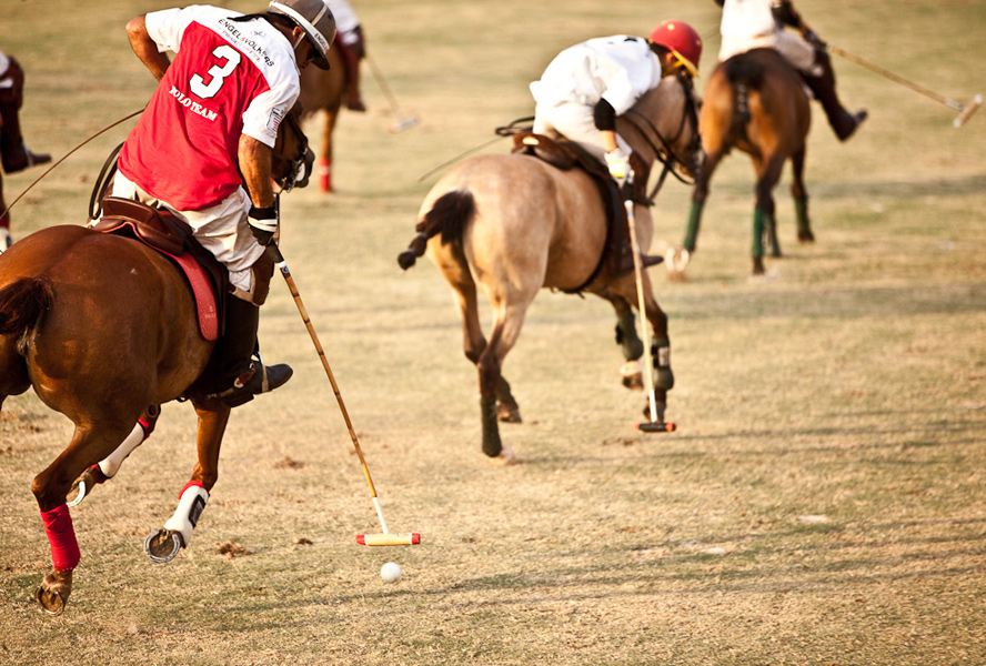 Diversity and fascination: The top events of the Polo Roadshow 2016