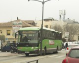 buses torre